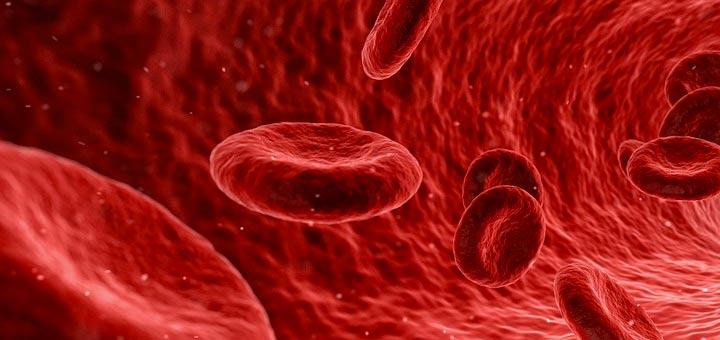 massage circulation sanguine